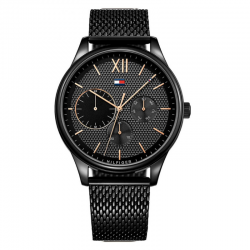 Montre Tommy Hilfiger Damon...